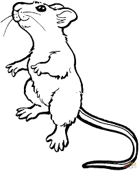 Small Picture Mole coloring page