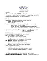 What To Put In Resume What To Put For Skills On A Resume Fast