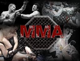 Saiba mais sobre o MMA e veja nosso CD!