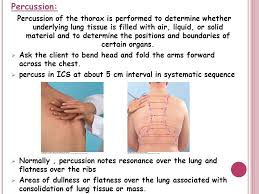 Percussion Note Chart Physical Examination Afnan Y Toonsi Ppt Video Online