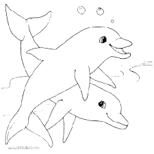 Best Images On Dolphins Common Dolphin And Dolphin Coloring Pages
