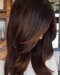 Copper Highlights For Dark Hair