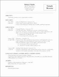 Courtesy Clerk Job Description Resume Beautiful Grocery Clerk Job