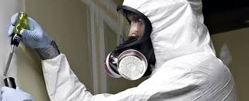 Image result for Asbestos management