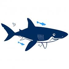 underwater shark xxl wall decal nursery kids rooms wall decals  underwater shark xxl wall decal nursery kids rooms wall decals kids room wall stickers baby wall decals and wall decors