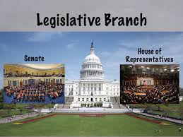 Image result for legislative branch pictures