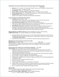 Free Professional Resume Examples | Free Professional Resume ...