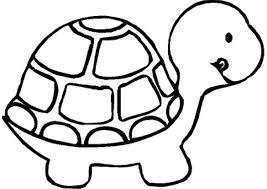 Turtle Preschool Coloring Pages Zoo Animals Animal Coloring Pages