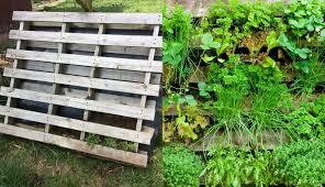 how to make a wooden pallet vertical garden