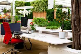 home office green themes decorating. wonderful office green themes decorating design for work space office joshta home beautiful  plastic plant white finish  throughout l