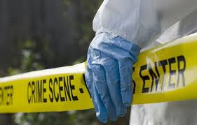 forensic pathologist how to become a forensic pathologist job profile courses plus