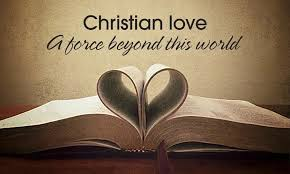 Christian Love Quotes Impressive Christian Quotes About Love –� NAIJANG