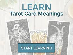 tarot beginner ready to bee a tarot master