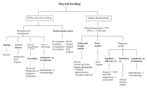 Thyroid Hormone Flow Chart The Hong Kong Practitioner