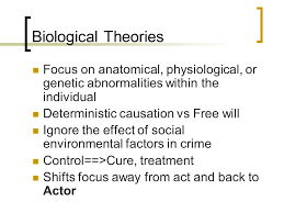 Biological Theory Biological Theories Of Crime Ppt Video Online Download