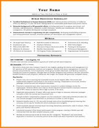Sample Professional Resume Format For Experienced Beautiful Artistic