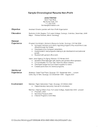 Resume Template Sample Professional Format Examples Basic