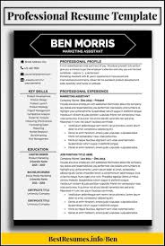 Modern Downloadable Resume Template Resume Resume Examples