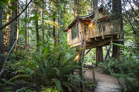 Secluded Intown Treehouse  Treehouses For Rent In Atlanta Largest Treehouse In America