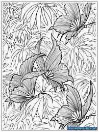 Butterfly Coloring Pages Adults Futuramame