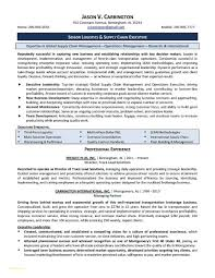 Executive Director Resume Template And Life Insurance Resume Example
