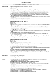 Database Administrator Senior Resume Samples Velvet Jobs