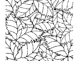 Small Picture TropicalLeafPatternColoringPagepng