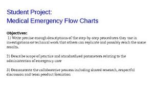 Student Project Emergency Care Flow Chart By Nina Suzette Tpt