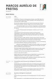Cfo Resume Examples - Pointrobertsvacationrentals.com ...