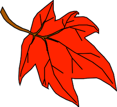 orange clipart png. orange leaf clip art clipart png 3