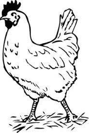 Small Picture blank rooster coloring pages coloring kids Pinterest