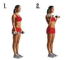 lose arm fat without gaining muscle