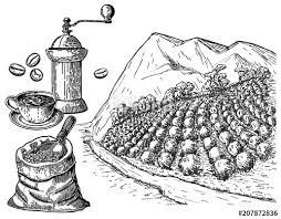 coffee plantation illustration. Exellent Coffee Coffee Plantation Landscape A Coffee Grinder A Bag Throughout Plantation Illustration G