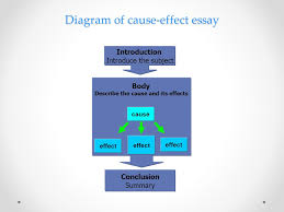 cause effect expository essay introduction the cause effect  14 transition