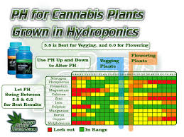 Cannabis Ph Chart Fix Your Plant In 7 Steps Cannabis Plant Infirmary