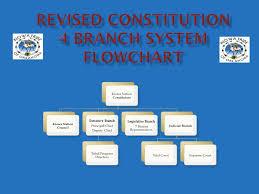 Revised Constitution Flowchart