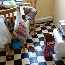 extreme cleaning services. Plain Cleaning Extreme Cleaning Services Filthy House In Extreme Cleaning Services I