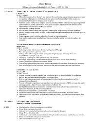 Commercial Insurance Resume Samples Velvet Jobs