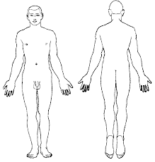 Body Chart Typical Body Chart In Bernard Knight Simpons Forensic