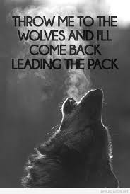 wolf wallpaper iphone tumblr. Brilliant Wolf Tumblr Wolf Quotes  Photo15 Throughout Wolf Wallpaper Iphone T