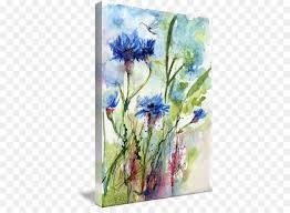 fl design cornflowers watercolor painting flower flowering plant png
