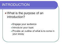 an introduction to mr pete paper your essay friend oh my goodness  6 what