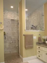 Best Bathroom Walk In Shower Images On Pinterest Bathroom