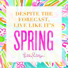 Lilly Pulitzer Quotes Enchanting Best Lilly Pulitzer Quotes
