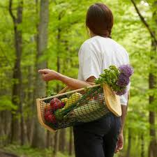 25 best gift ideas for gardeners in