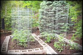 small vegetable garden ideas on a budget idea soil dayri me