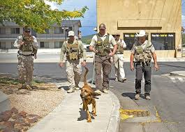 Arizona Correctional Officer Department Of Corrections Trains Bloodhounds In Williams Williams