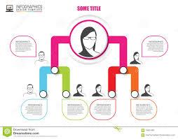 Organization Chart Vector Organization Chart Infographics Design Infographics Vector