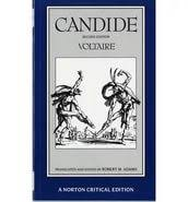essays on candide related post of essays on candide