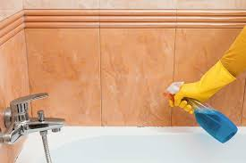 clean mold in bathrooms shower tubs